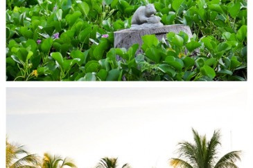 A statue of hutia, banana rat living in the island of Cayo Levisa